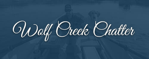 Wolf Creek Chatter