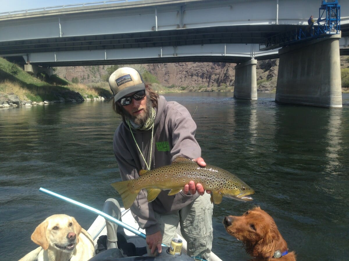 brown trout Archives - Page 4 of 6 - Wolf Creek Angler
