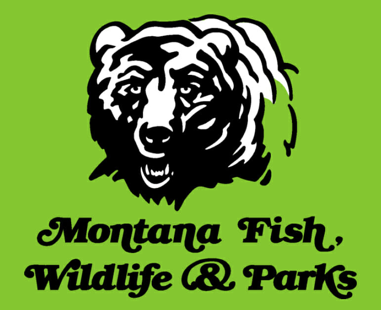 Reminder your 2016 montana fishing license expires for Mt fish wildlife and parks